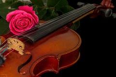 Нот листа скрипки и подняло Стоковое Фото