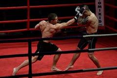 Ноча боя боя Стоковая Фотография