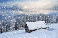 ноча волшебства ландшафта рождества Стоковая Фотография