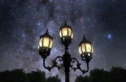 Ноча в парке Стоковые Фотографии RF