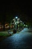 Ноча в парке Стоковое Изображение RF
