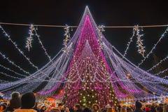 Ноча города Вильнюса живет около рождественской елки стоковая фотография
