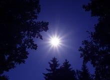 ноча дня Стоковая Фотография RF