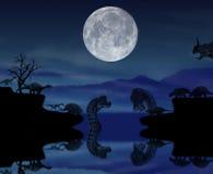 Ноча живой природы с динозаврами в истории Стоковое фото RF