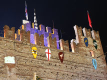 ноча замока средневековая Стоковые Изображения