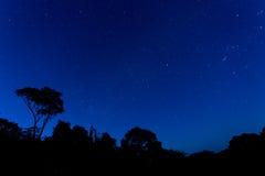 ноча звёздная Стоковая Фотография RF
