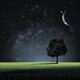 ноча звёздная Стоковое Изображение RF