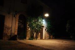 ноча здания старая Стоковые Фотографии RF