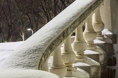 Ноча зимы в парке и снеге Стоковые Изображения RF