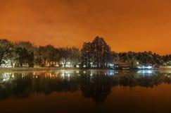 Ноча зимы в парке Стоковая Фотография