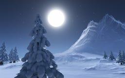 Ноча зимы Стоковое Фото