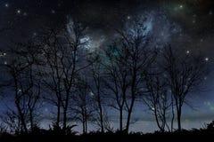 Ноча играет главные роли небо Стоковые Изображения