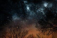 Ноча играет главные роли небо Стоковые Фото