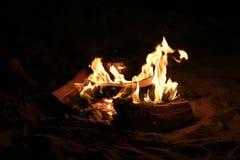 ноча испепеления лагерного костера заросли Стоковое Фото