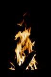 ноча испепеления лагерного костера заросли Стоковое фото RF