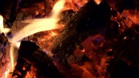Ноча и огонь Горящий костер и накаленный докрасна конец-вверх углей видеоматериал