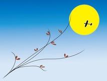 ноча луны aeronef Стоковые Фотографии RF