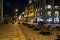ноча Осло Стоковая Фотография