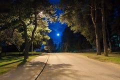 ноча переулка Стоковые Фотографии RF