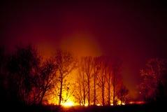 ноча пожара стоковая фотография rf