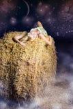 ноча поля сновидений Стоковая Фотография RF