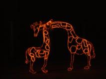 Ноча рождества на зоопарке Стоковая Фотография RF