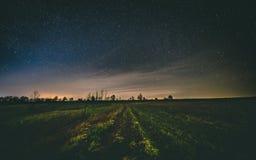 Ноча самостоятельно под звездами Стоковые Фотографии RF