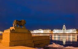 Ноча Санкт-Петербург. Стоковая Фотография RF
