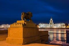 Ноча Санкт-Петербург. Стоковые Изображения RF
