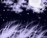 ноча сверкная Стоковые Изображения RF