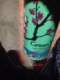 Ноча темноты зеленого чая Аризоны стоковые фото