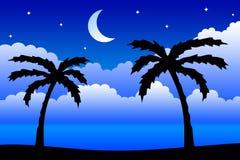 ноча тропическая бесплатная иллюстрация