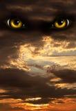 ноча ужаса Стоковая Фотография
