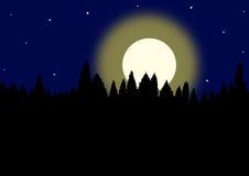 ноча луны иллюстрации 3 d Стоковые Изображения RF
