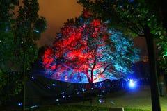 Ноча фестиваля белая Стоковые Фото