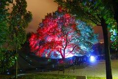 Ноча фестиваля белая Стоковое Изображение