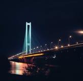 ноча южная Украина kyiv моста Стоковые Изображения