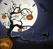 ноча halloween Стоковые Изображения