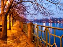 ноча prague Woth обваловки Smetana мостить тротуар, деревья и metal орнаментальные перила, чехия Стоковые Изображения RF
