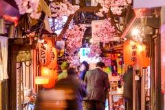 Ночная жизнь токио Shinjuku стоковая фотография rf