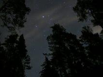 Ночное небо играет главные роли созвездие Auriga Стоковые Изображения RF