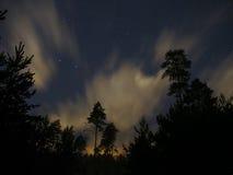 Ночное небо играет главные роли облака леса созвездия Большой Медведицы Стоковые Фотографии RF