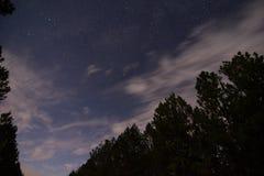 Ночное небо и звезды в Bancroft Луизиане стоковые изображения rf