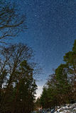 ночное небо молнии иллюстрации абстракции Стоковая Фотография
