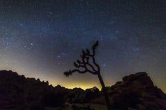 Ночное небо над национальным парком дерева Иешуа, Калифорнией Стоковое Изображение RF