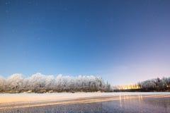 Ночное небо с звездами в ноче зимы с деревьями Стоковые Фото