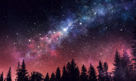 Ночное небо ясности Stary Мультимедиа стоковая фотография rf