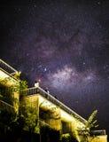 Ночное небо Stary над тропическим лесом Стоковое фото RF