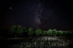 Ночь звезд в поле стоковая фотография rf
