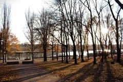 ноябрь Почти зима здесь стоковые изображения